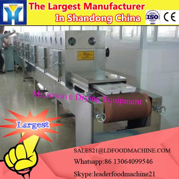 Microwave Mulberry leaf tea Drying Equipment #1 image
